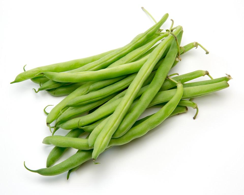 Organic Beans Green Round (10kg/box)