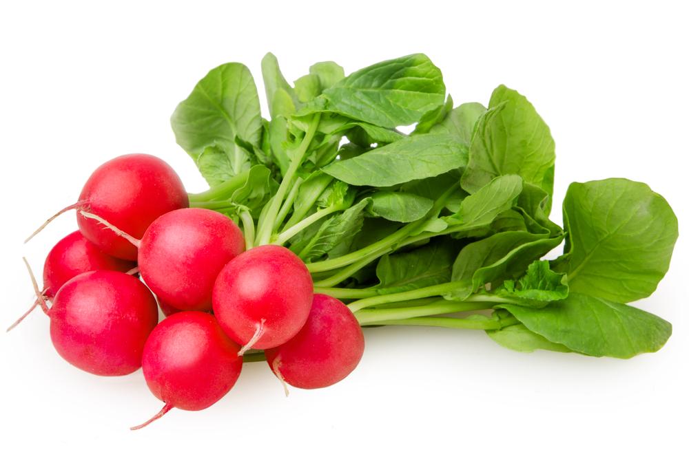Organic Radish Red (bunch)