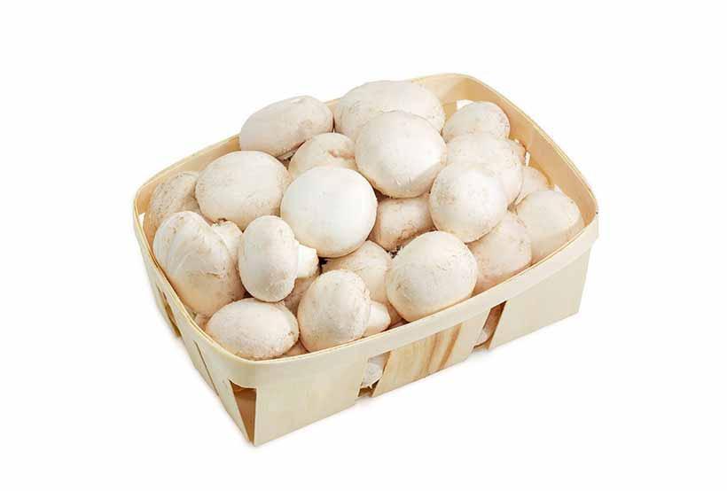 Organic Mushrooms Punnet White (each)