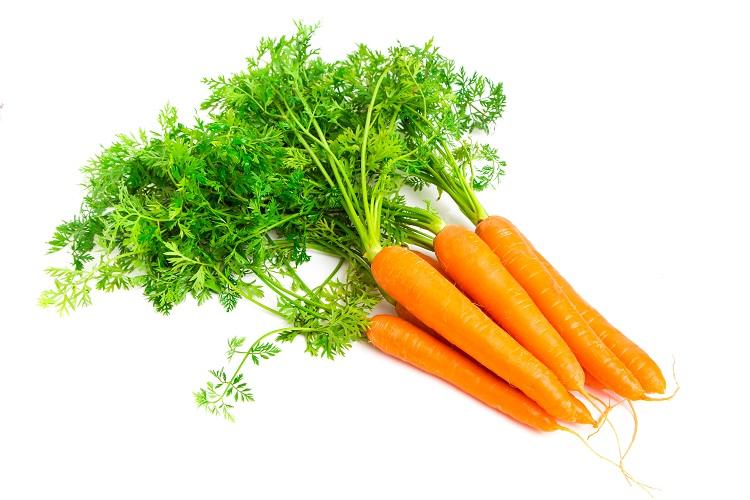 Organic Carrots Dutch (5bunch/bundle)
