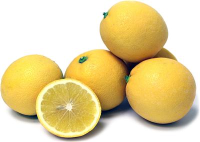 Organic Lemonade Fruit (9kg/box)