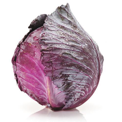 Organic Cabbage Red (10ea/box)